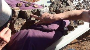 Putting together a sauropod bone in outback Australia