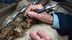 Removing rock matrix from a fossil