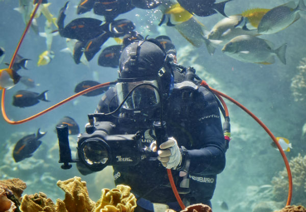 Scuba diver holding a camera pointing at reef outcrop