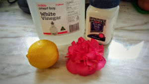 Pink flower, yellow lemon, container of bicarbonate soda and white vinegar on a bench