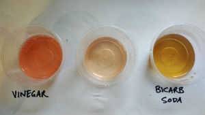 three plastic containers with coloured liquids, pink labelled vinegar, light yellow no label, brownish yellow labelled bicarb soda