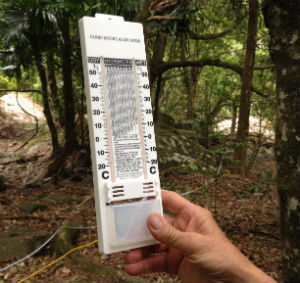 Hygrometer in a rainforest