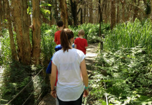Lachlan swamp bushwalk - kids walking through a Melaleuca swamp trail