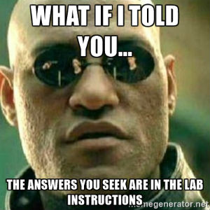 Morpheus meme - What if I told you... the answers you seek are in the lab instructions