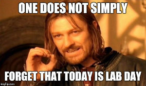 One does not simply forget that today is lab day
