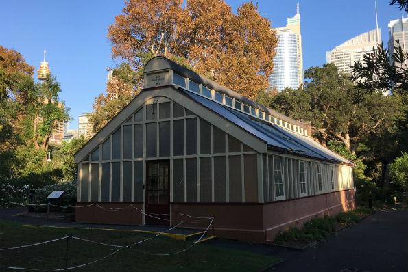 Palm house in Royal Botanic Garden Sydney