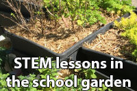 STEM in the school garden