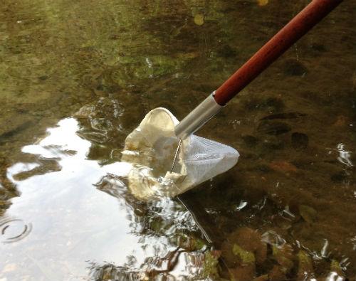 Sampling water and benthos