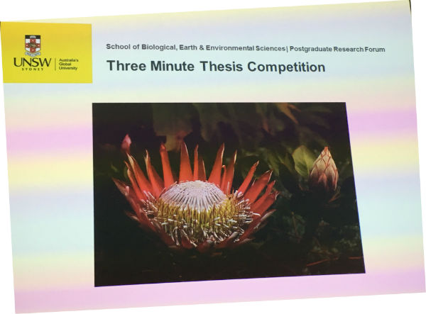 UNSW BEES 3 minute presentations