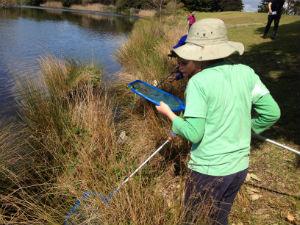 Water scoops in Centennial Parklands