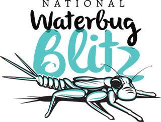 National Waterbug Blitz